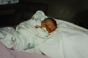 Logan, December 3, 1995