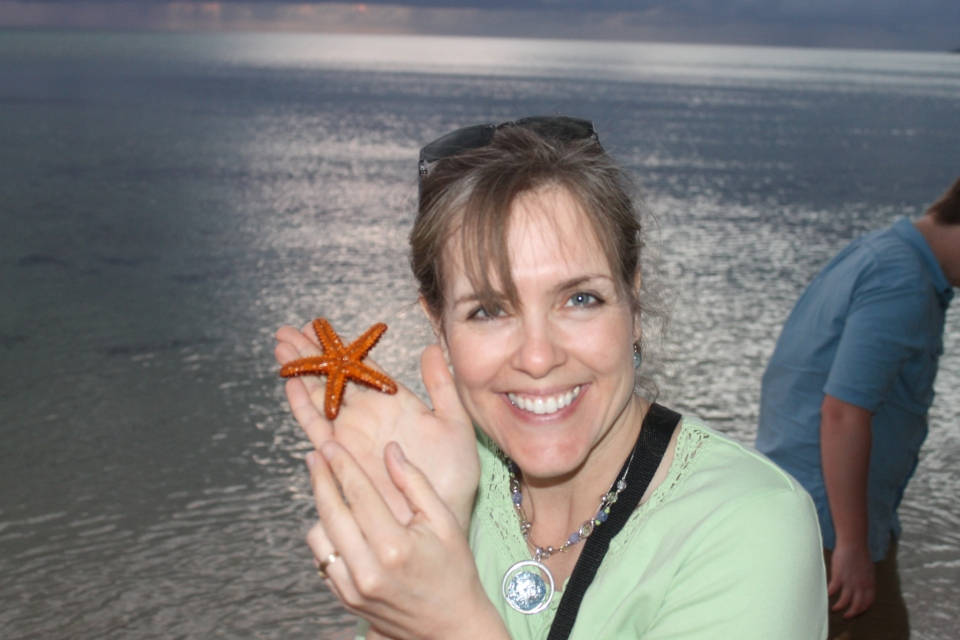 A live star fish at the beach.