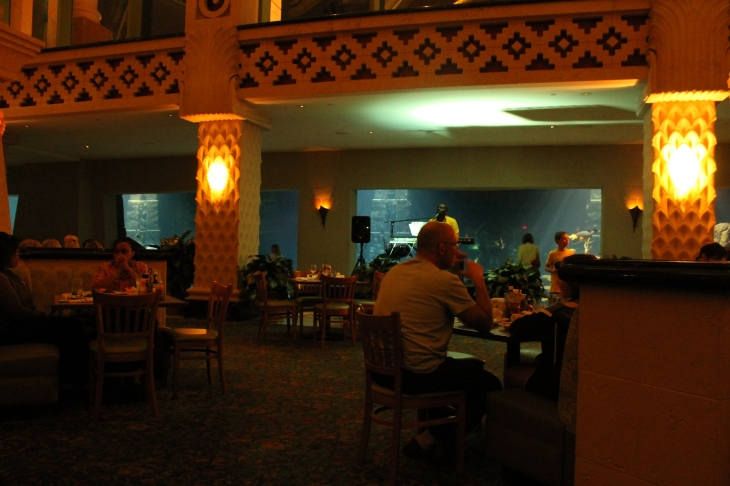 Our entertainment during our Valentine's Day celebration at  Atlantis's The Dig.