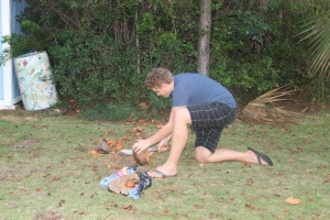 Tis the season for coconuts.  Zachary has become a machete wielding coconut cutter upper.