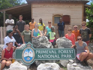 On September 7th the ALC&C staff had a day out together at the Primeval Forrest.