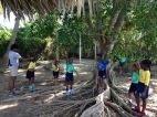 Hope: grade 2 learning about the plants