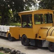 DSCF5885