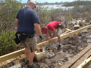 The guys helped with the board walk in the wetlands